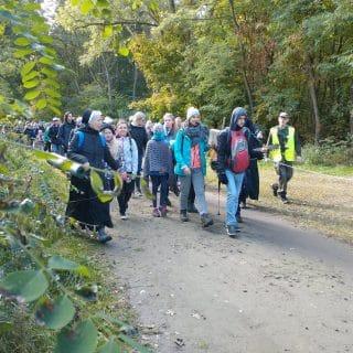 Grupa pielgrzymów idzie ścieżką przez las